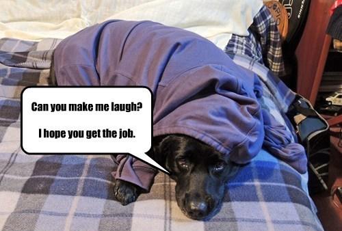 Can you make me laugh? I hope you get the job.