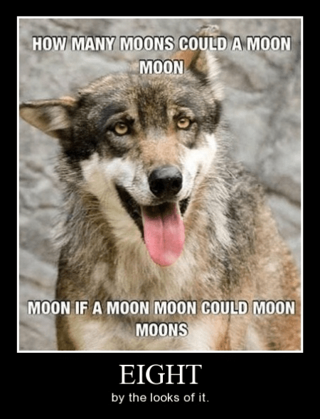 moons,funny,wolf