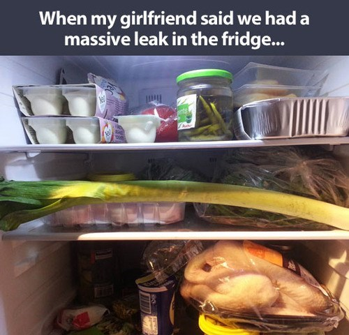 vegetables leeks food puns refrigerator food - 7870001152
