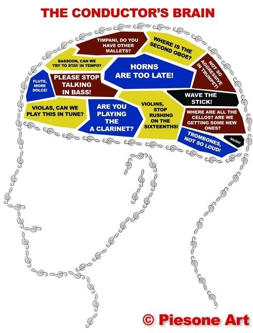 The Makeup Of a Conductor's Brain