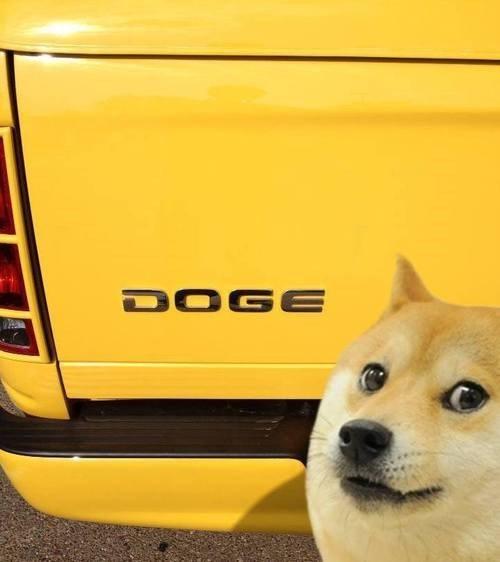 puns cars shibe - 7870125568