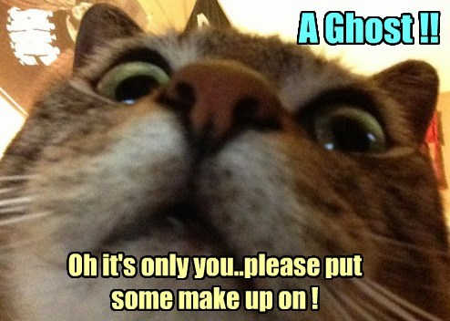 A Ghost !! Oh it's only you..please put some make up on !
