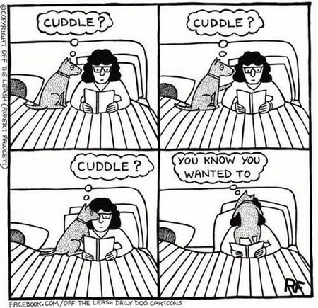 dogs cuddles funny web comics - 7870354176