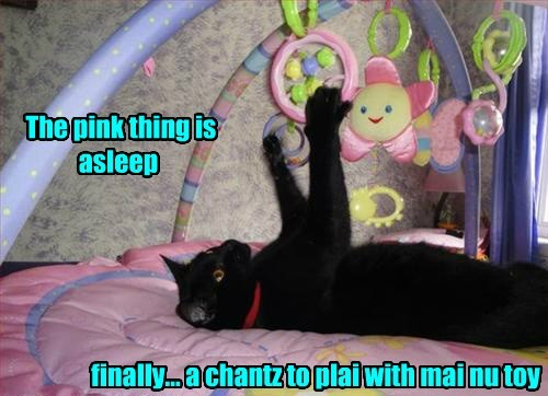 The pink thing is asleep finally... a chantz to plai with mai nu toy