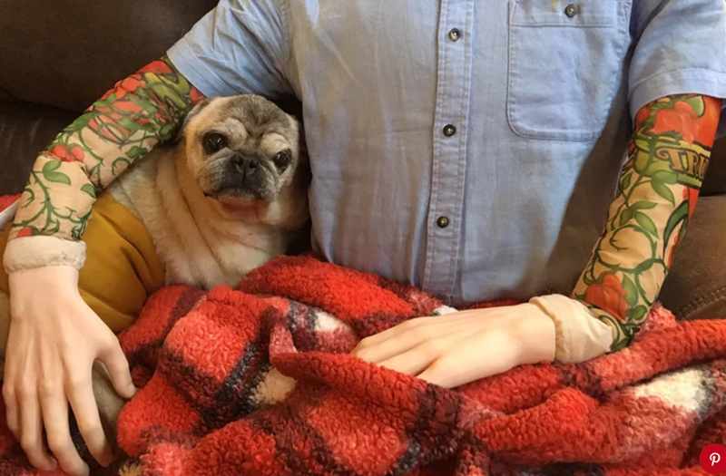 man dressed mannequin with his clothes to calm anxious dog