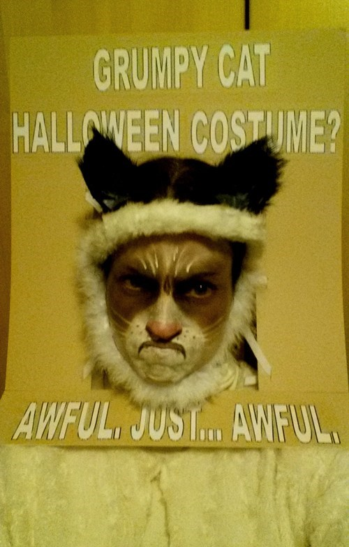 costume hallowmeme Grumpy Cat g rated - 7872132352