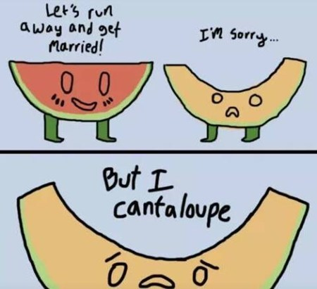 marriage,puns,fruits,elope,funny