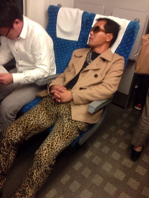 fashion planes leopard print traveling - 7872310016