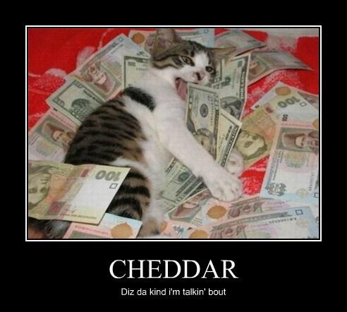 Cheezburger Image 7872482560
