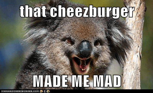 Cheezburger Image 7873422080