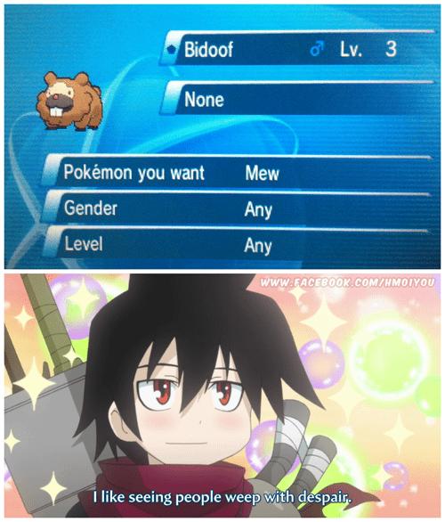 Pokémon senyu GTS bidoof - 7873607424