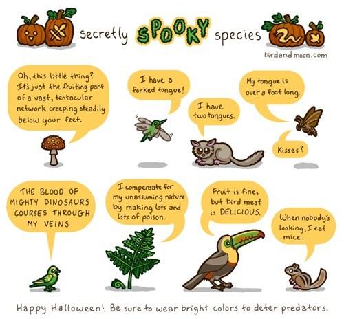 wtf Terrifying spooky science animals - 7874126080