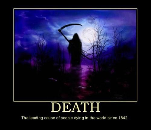 wtf Death idiots funny - 7874182912