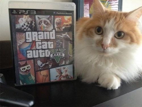 grand theft auto v,Cats