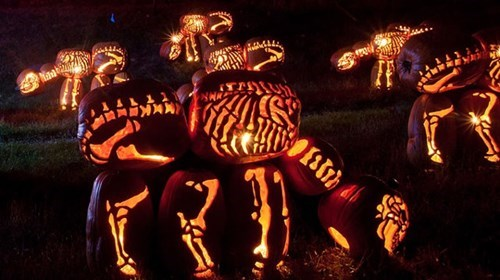 pumpkins halloween skeleton carving funny dinosaurs g rated win - 7874565376