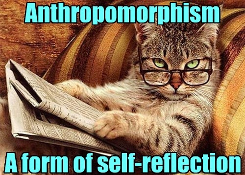 Anthropomorphism A form of self-reflection