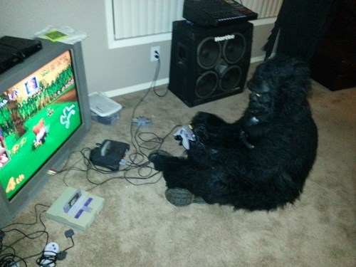 donkey kong Mario Kart nerdgasm funny gorilla - 7874577152