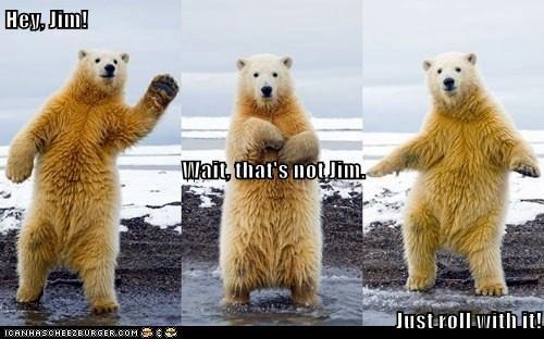 be cool polar bears north pole - 7874600704