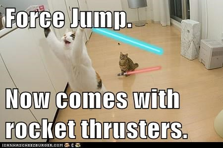 light saber,national cat day 2013,star wars,Cats