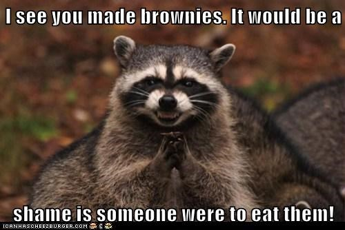 I see you made brownies. It would be a shame is someone were to eat them!