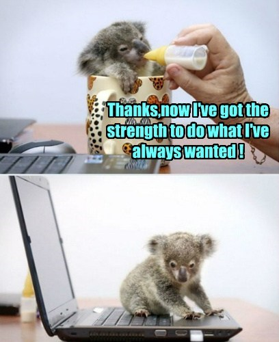 Thanks,now I've got the strength to do what I've always wanted !