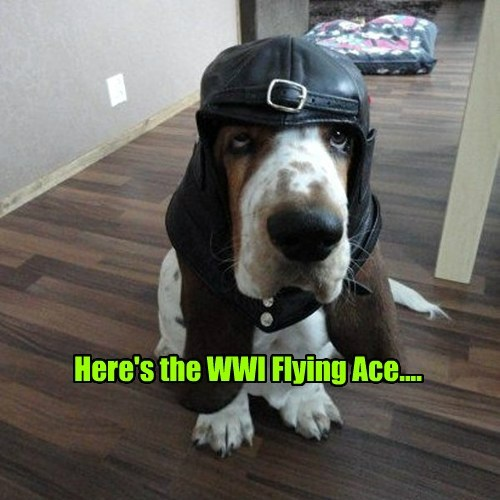 Here's the WWI Flying Ace....