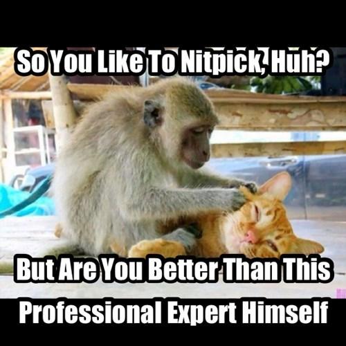Cats picky monkeys nitpick - 7875358976