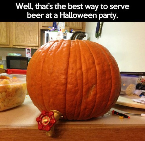 beer,pumpkins,halloween,genius,funny,Spooky FAILs and HalloWINs,g rated,after 12