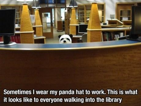 bamboo panda library - 7876066048