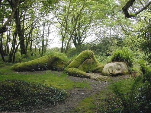 wtf garden sculpture funny - 7876088064