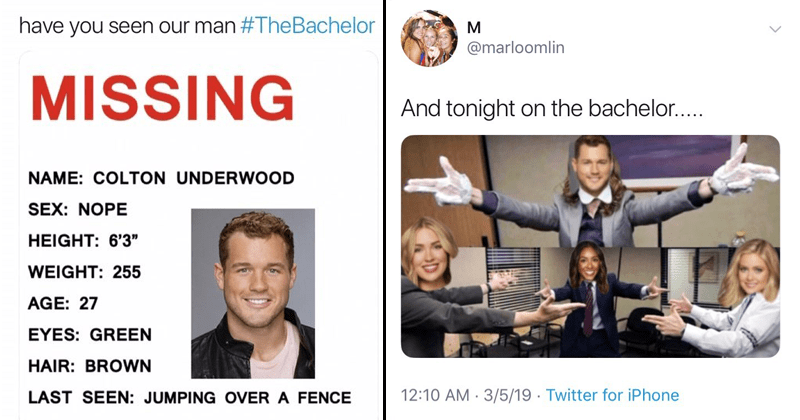 Funny reactions and funny memes to the fence-jumping episode of the bachelor starring Colton Underwood and Cassie Randolph.