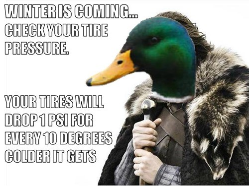 brace yourselves,Memes,actual advice mallard.