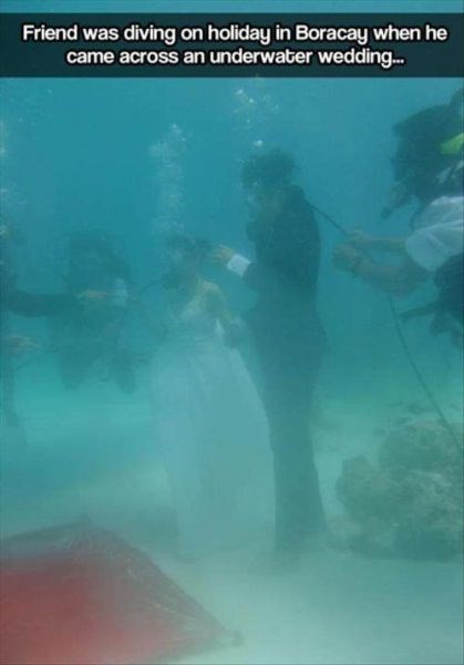weddings,funny,scuba diving