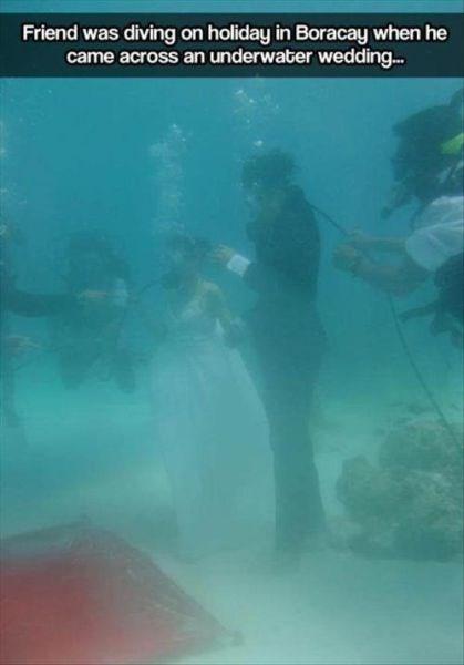 weddings funny scuba diving - 7876534016