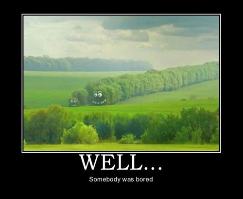 trees wtf bored funny