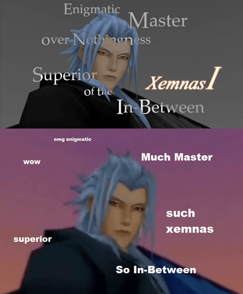 doge,kingdom hearts,xemnas