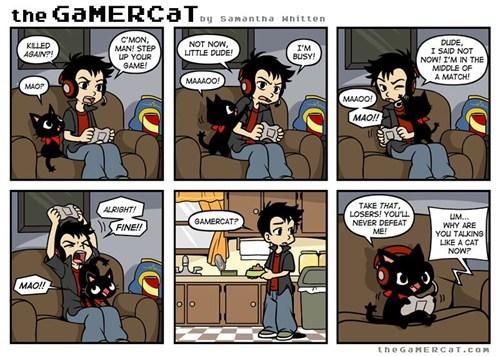 true life Cats funny web comics - 7877282560