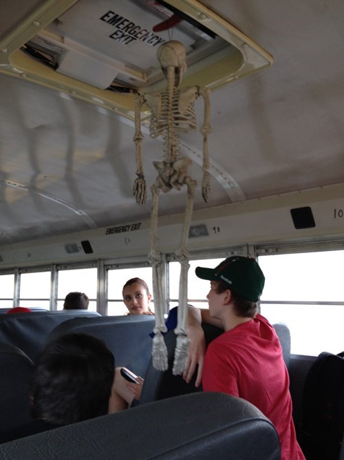 wtf halloween skeleton school bus funny g rated - 7877807104