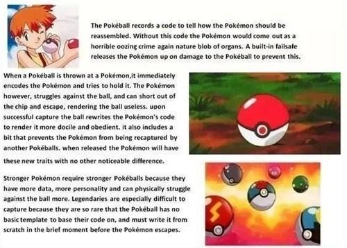 Pokémon poke ball this makes sense - 7877933056