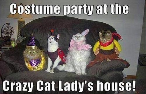 costume crazy cat lady halloween Cats - 7878181888