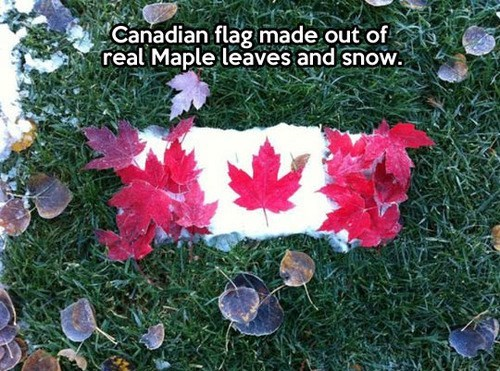Canada puns flag - 7879248128