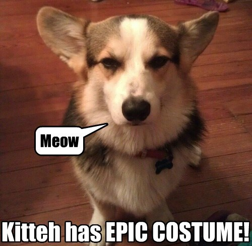 Meow Kitteh has EPIC COSTUME!