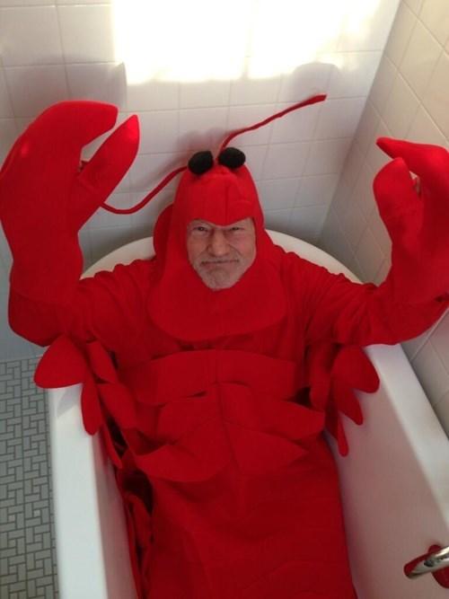 costume lobster halloween patrick stewart - 7879272192
