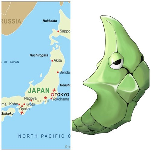 Pokémon metapod totally looks like Japan funny - 7879309312