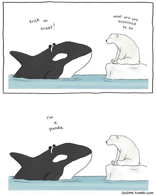halloween polar bears panda whales funny - 7879397376