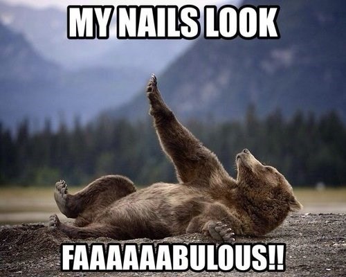 nails bears puns fabulous - 7880988160