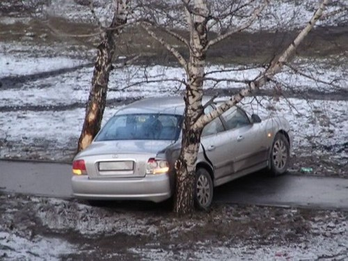 trees cars there I fixed it parking - 7881086720