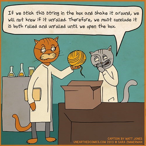 science,Cats,funny,schrodingers-cat