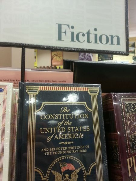 the constitution books fiction - 7881988864