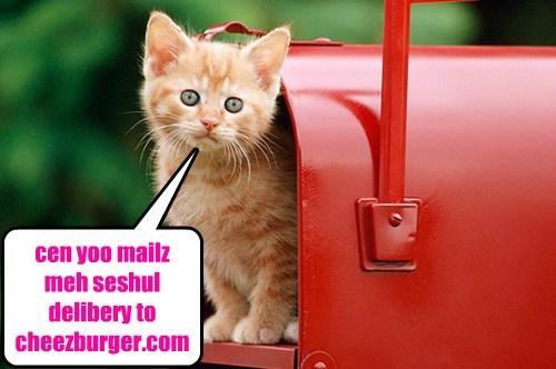 Cheezburger Image 7882337280